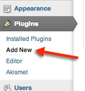 Adding a plugin to WordPress
